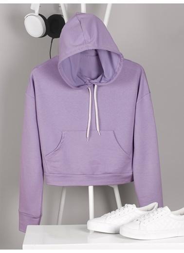 Nbb Sweatshirt Lila